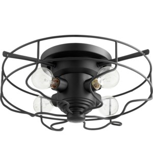 17 Inch Ceiling Mount Black Noir