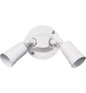 2 Light Transitional White Outdoor Wall Light
