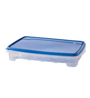 Egg Tray Plastic 13.5x9x2.5in with Blue Lid                  643700325693