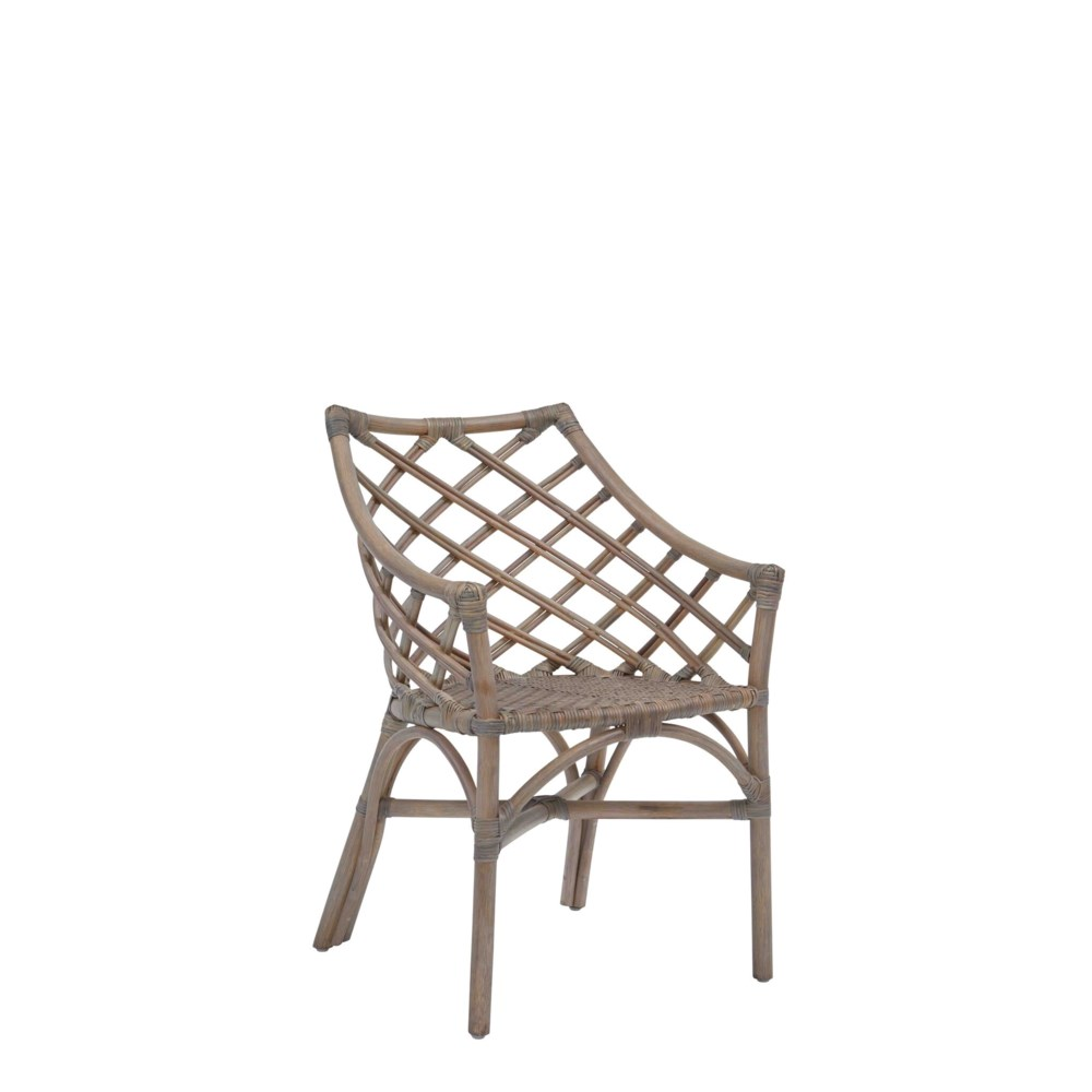 NEW!!  Sara  Arm Chair Color - Matte Gray