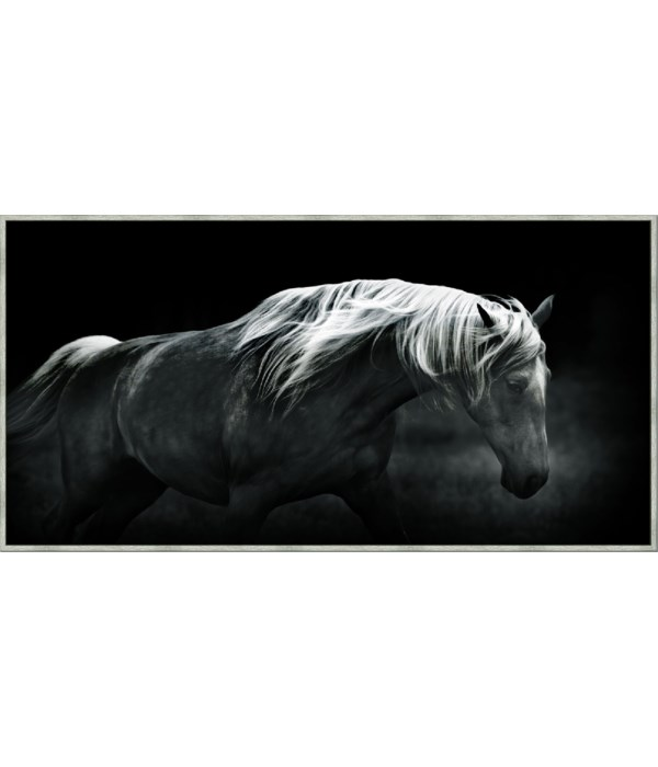 BONNIE PORTRAIT - Giclee on Canvas