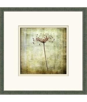 VINTAGE PLANT I (giclee)