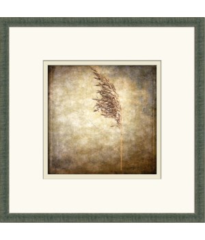 VINTAGE PLANT III (giclee)