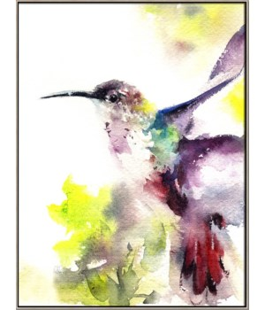 HUMMINGBIRD (in floater frame)