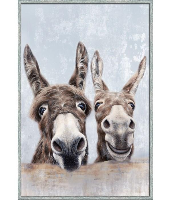 DONKEYS (framed)