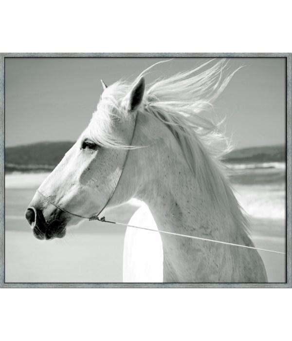WHITE HORSE & SEA WINDS (framed)