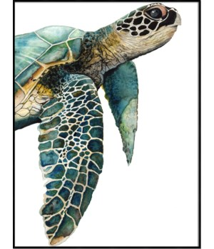 GREAT SEA TURTLE