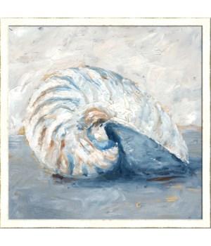 BLUE SHELL STUDY I (framed)
