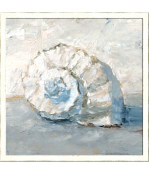 BLUE SHELL STUDY III (framed)