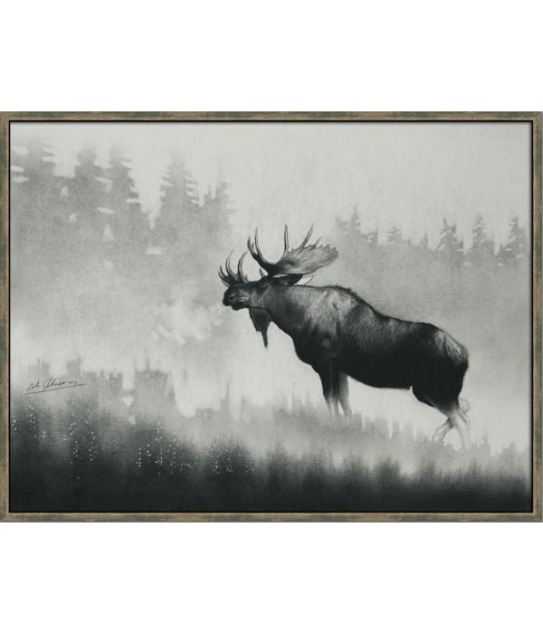 BULL MOOSE - HIGH GLOSS (framed)