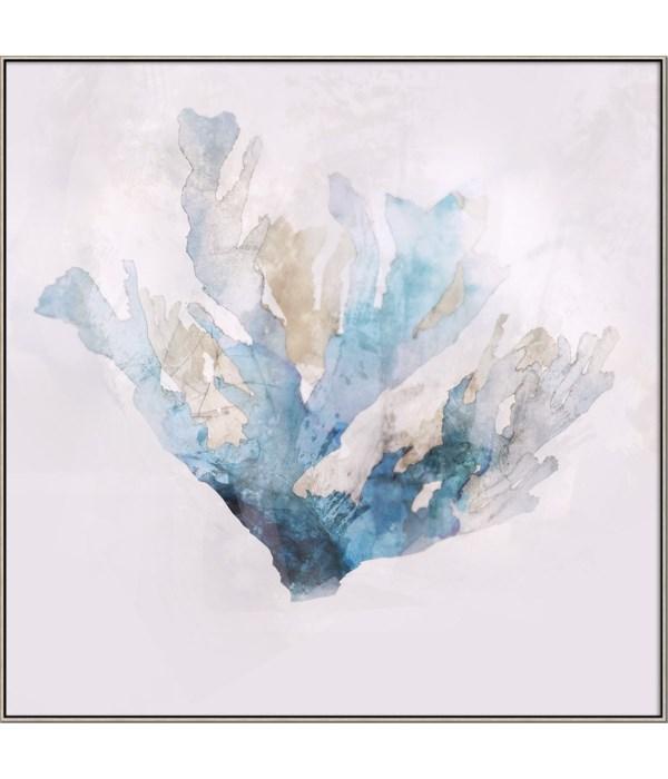 BLUE CORAL I (framed)