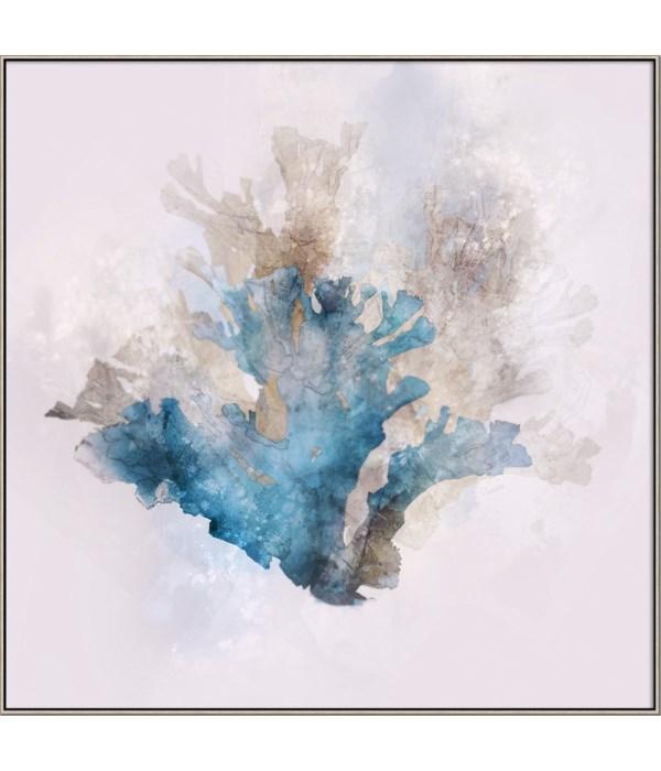 BLUE CORAL II (framed)