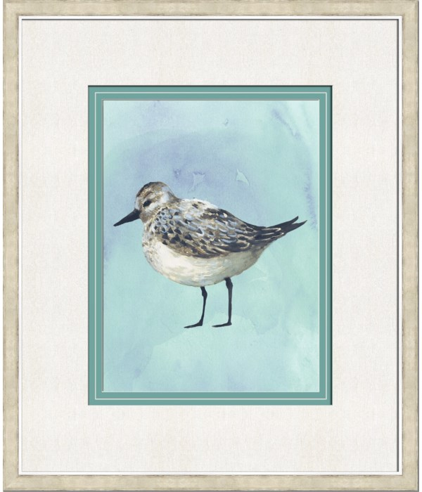 WATERCOLOR BIRDS IV