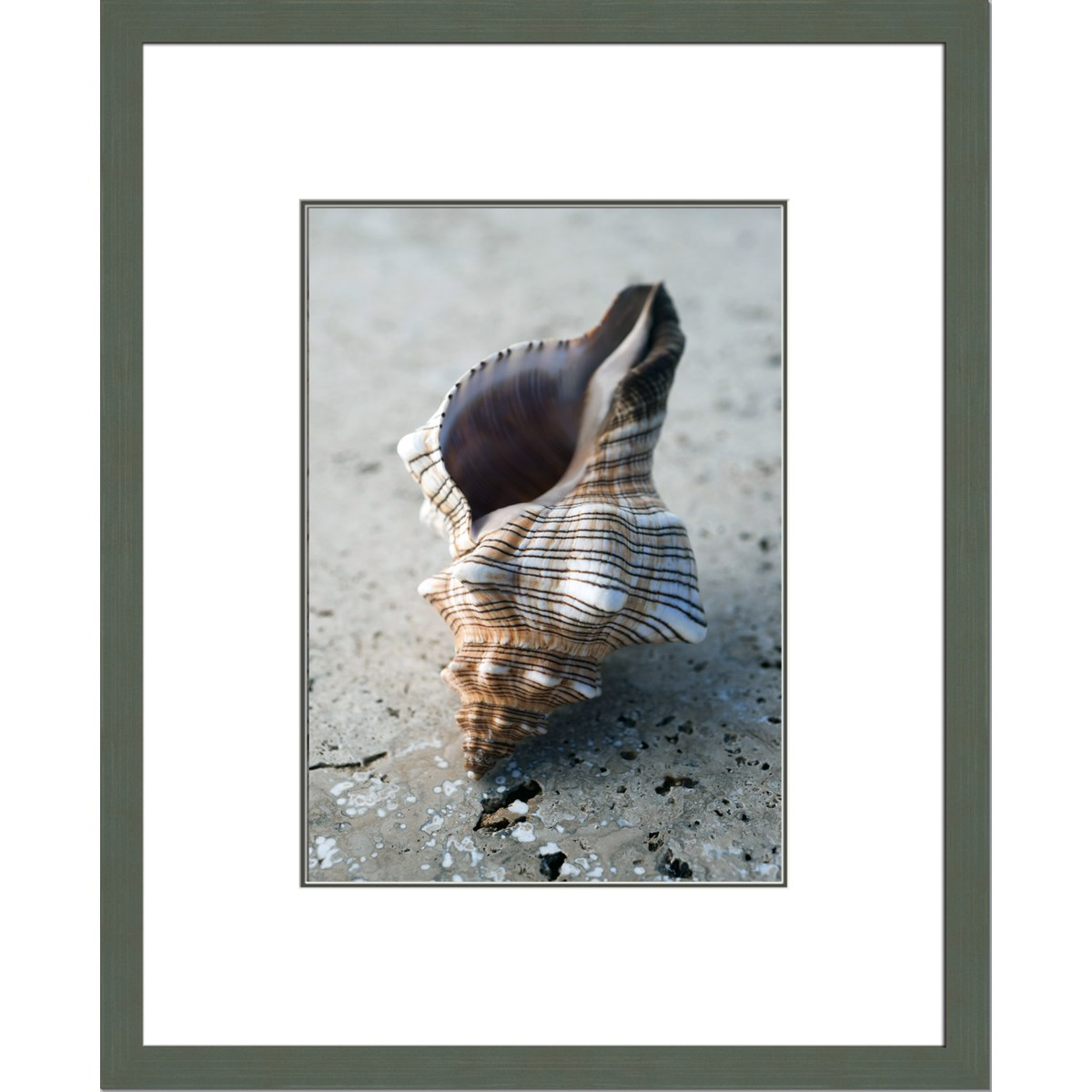 GIFTS OF THE SHORE II