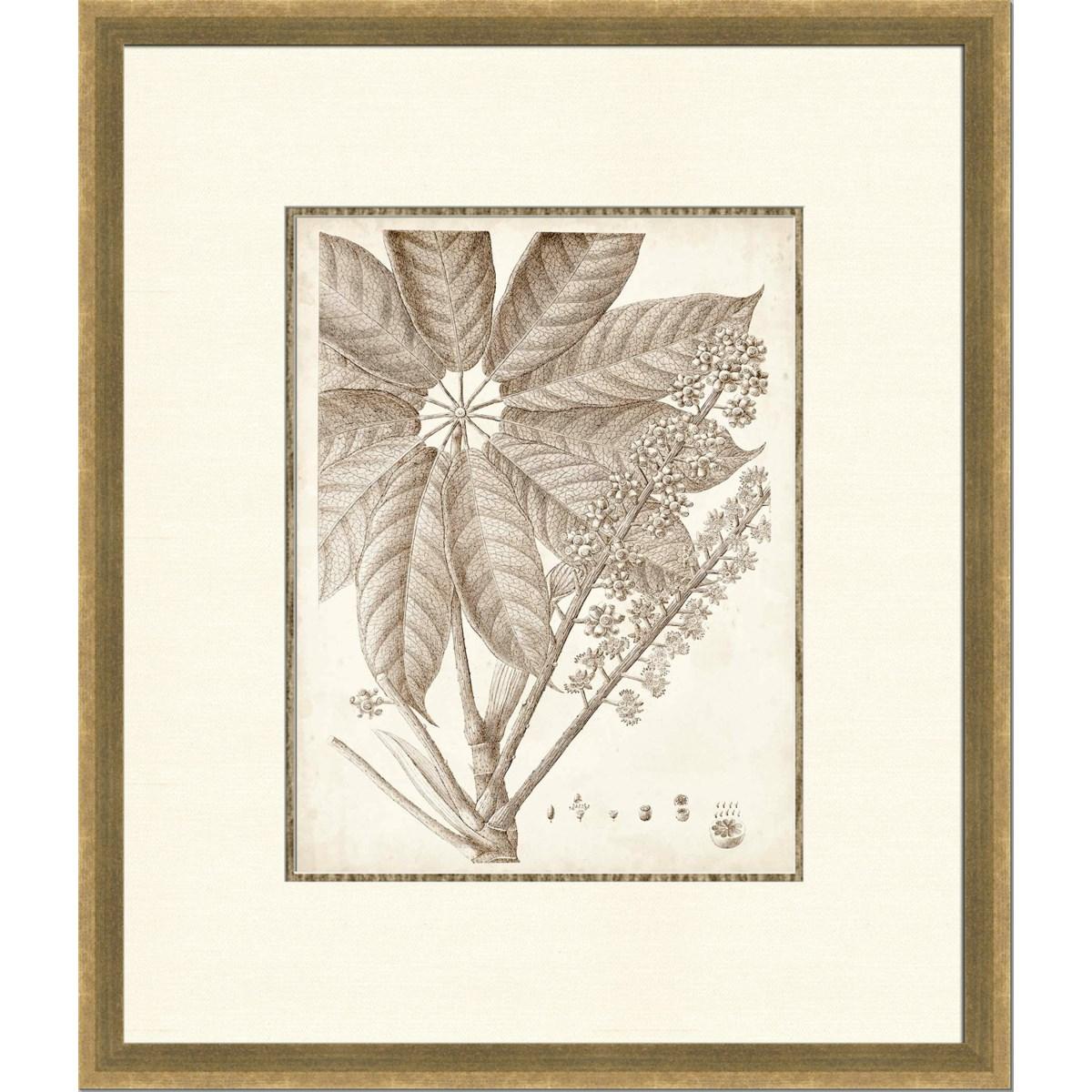 SEPIA EXOTIC PLANTS V