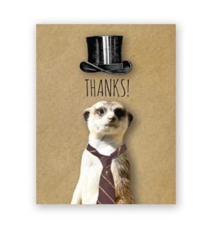 Thank You Meerkat