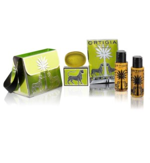 LIME HANDBAG GIFT SET