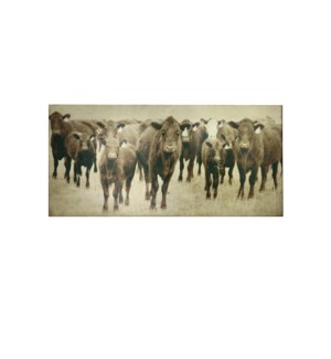 BOVINE CANVAS ART | Cow Photography with Gold Leaf Foil | 1.5 inch Gallery Wrap