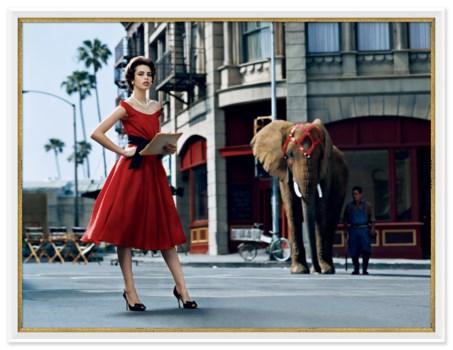 "Glamour, ""Model with Elephant"", Kenneth Willardt, September 2005"
