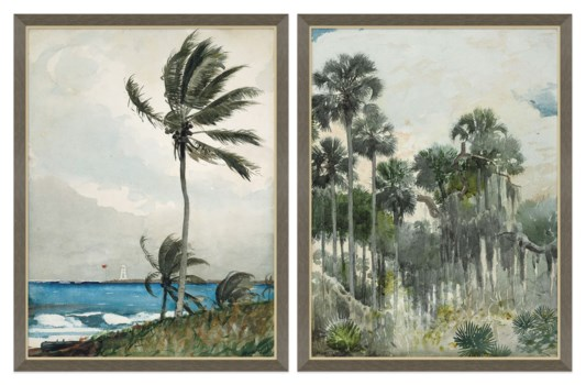 Palm & Lighthouse & Palms Out East