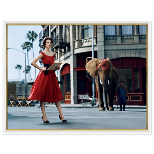 "Glamour, ""Model with Elephant"", Kenneth Willardt, September 2005"