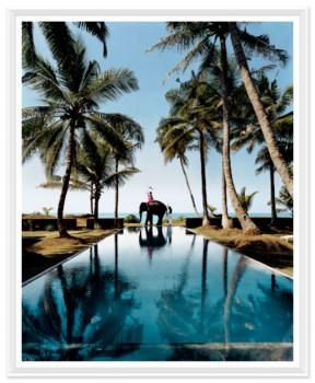"Traveler, ""Have Elephant, Will Travel"", Lisa Limer, July 2004"