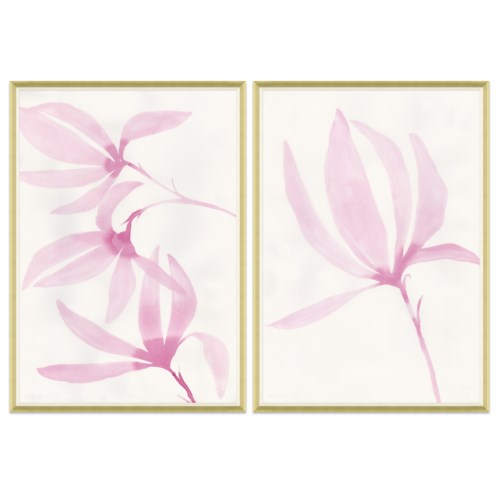 Tulip Magnolia & Single
