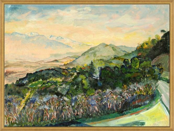 Provence 1968