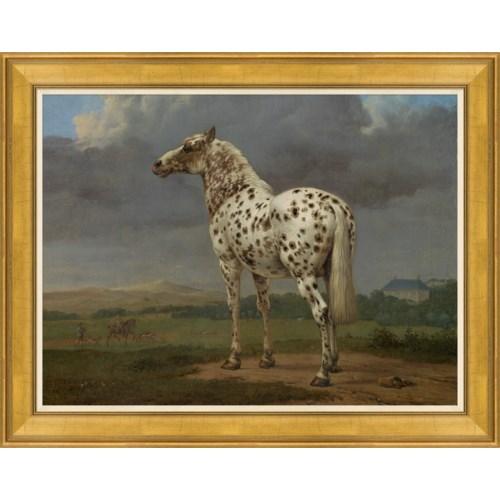 Champion Horse II