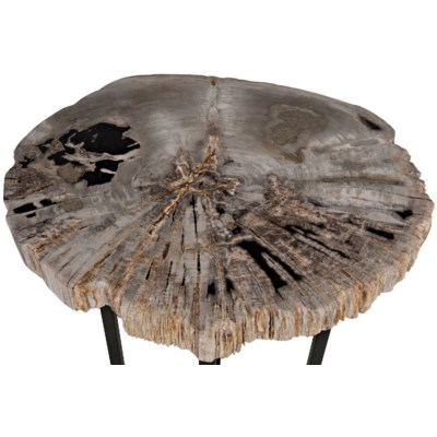 Large Cross Base Petrified Top Side Table