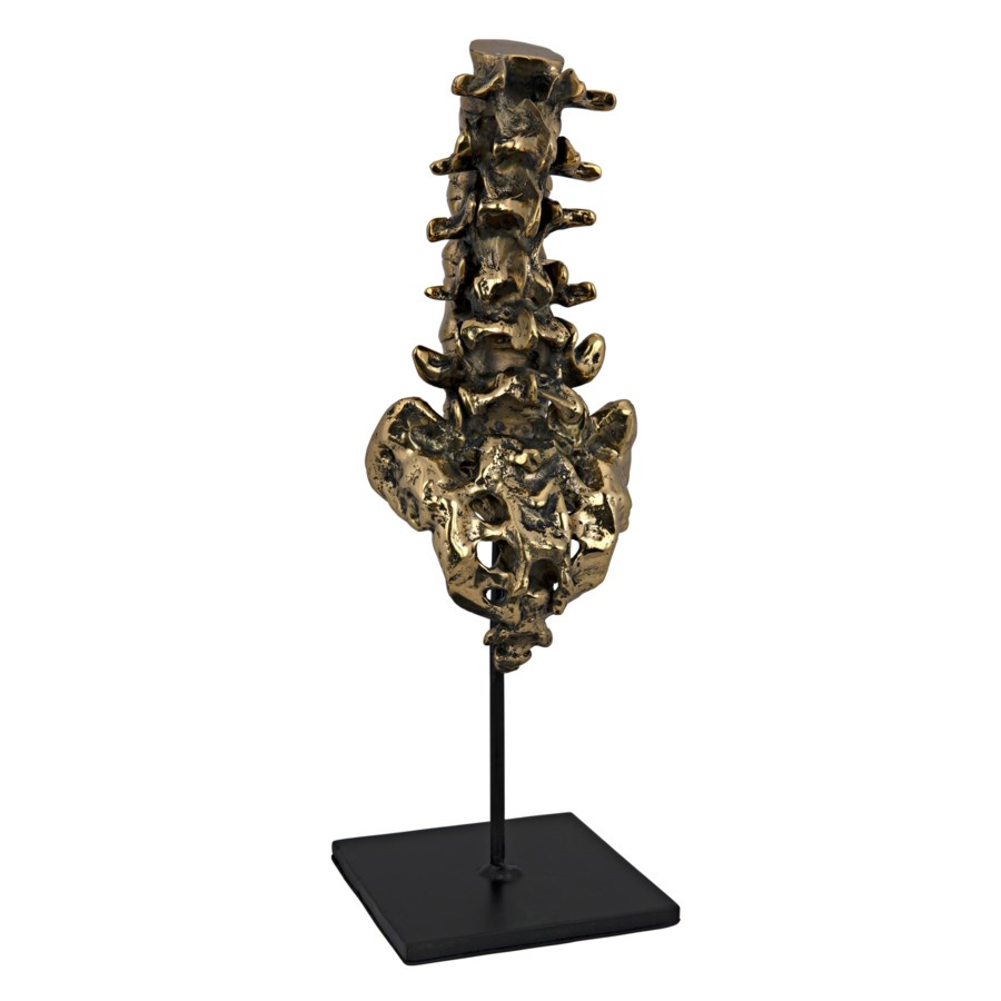Vertebrae, Brass and Metal