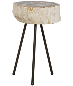 Z Natura Side Table, Metal and Petrified Wood