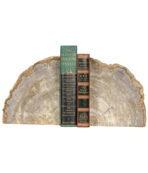 Z Petrified Bookends with Rough Edges