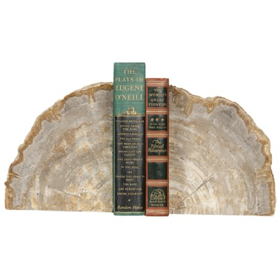 Petrified Bookends with Rough Edges