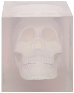 Skull in Resin, White