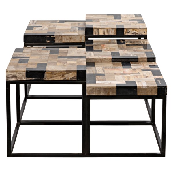 Plato Coffee Table, Metal and Fossil