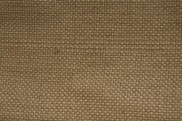 Olive Cotton