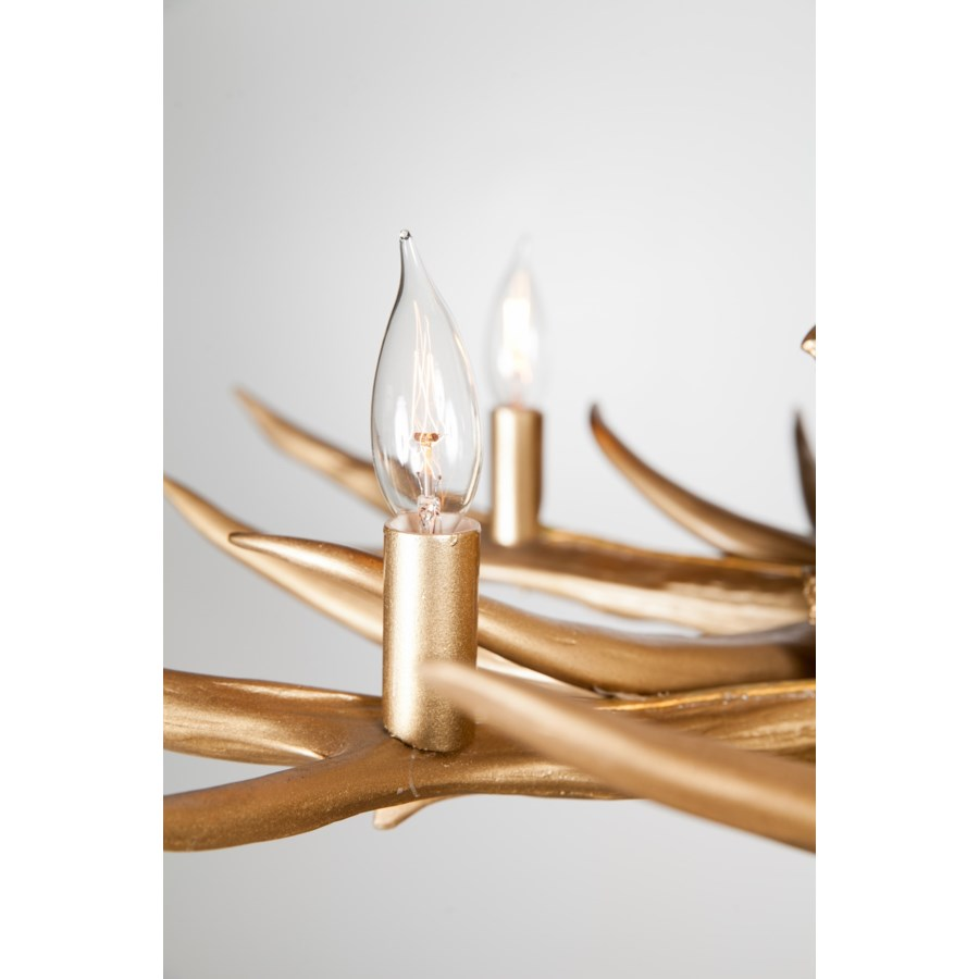 Antler Chandelier with 6 Lights in Gold