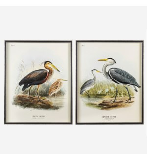 "* Waterbirds Purple Heron (396) and Common Heron (395) Set/2, 24""x30"""