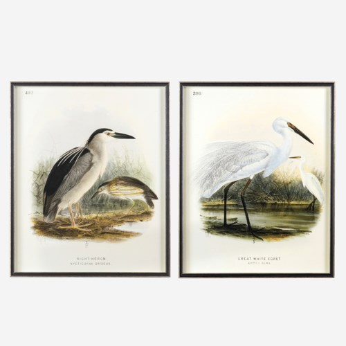 "* Waterbirds Night Heron (402) and Great white Egret (398)  Set/2, 24""x30"""
