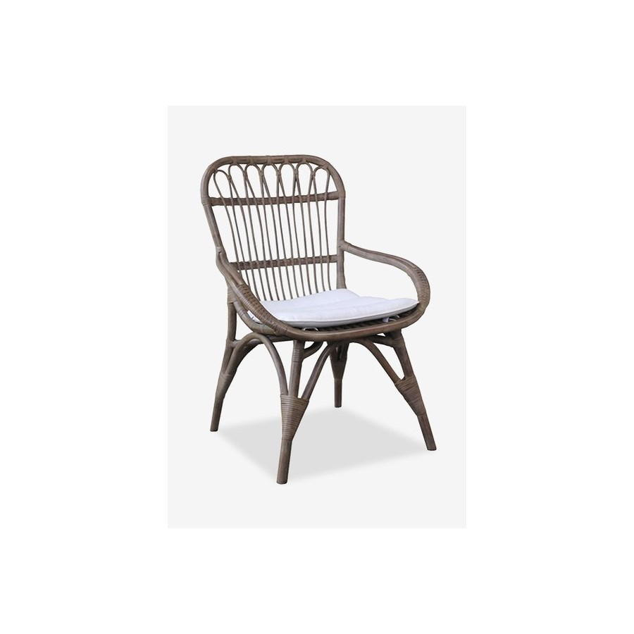 Wondrous Cabello Vintage Grey Rattan Dining Chair With Cream Cushion 25 5X27X38 Ocoug Best Dining Table And Chair Ideas Images Ocougorg