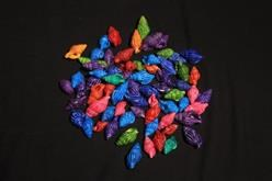 DYED SHELLS