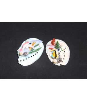 """ABALONE MAGNET 2.5"""""""