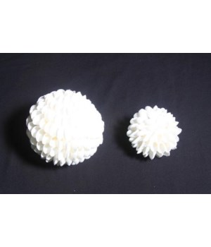 CLAM ROSE SHELL BALL 4""
