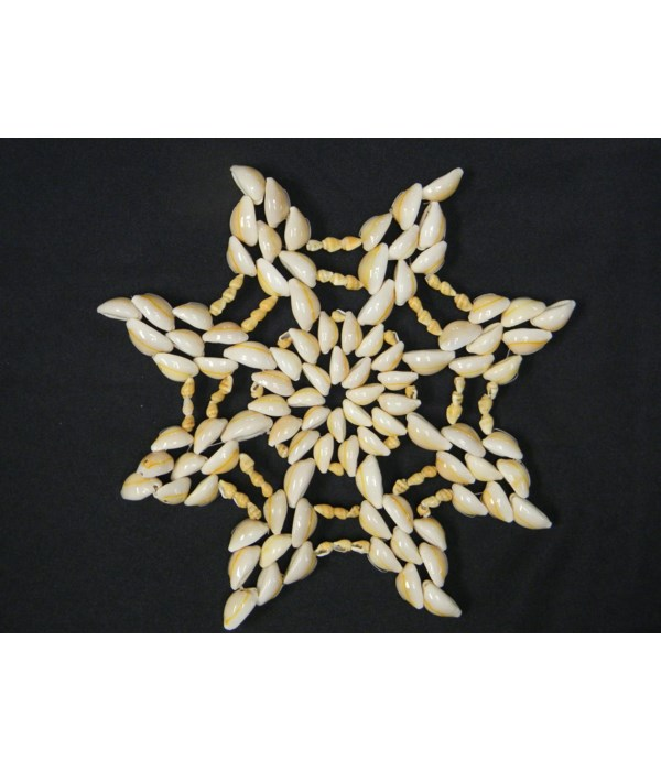 """8"""" COWRIE PLACEMAT"""