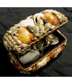 "6"" NATURAL SHELL BOX"