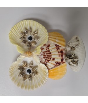 PECTEN OWL ASSORTMENT
