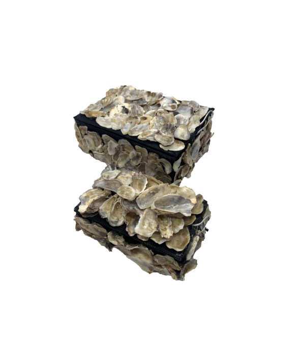 OYSTER SHELL BOXES