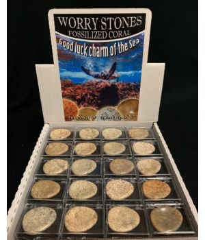 80PC FOSSIL WORRY STONE