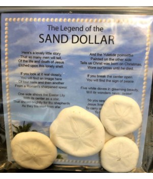 "LEGEND OF THE SAND DOLLAR""SEA COOKIE"""